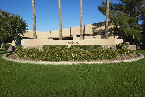mental health treatment tempe